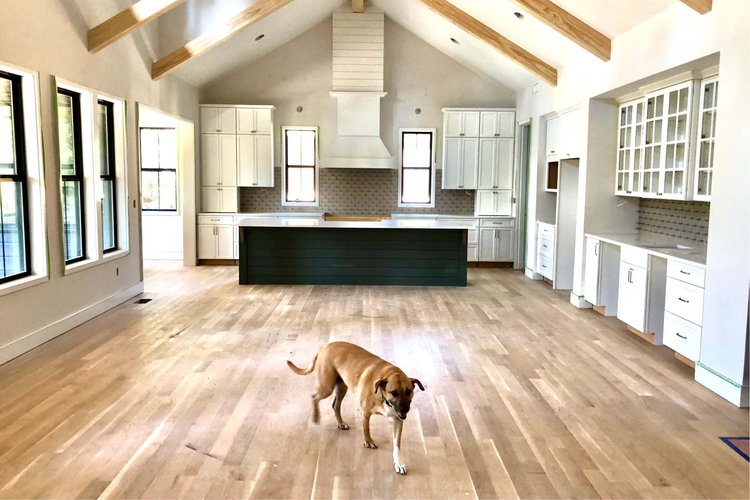Lake Cove kitchen and dining area after build with family dog